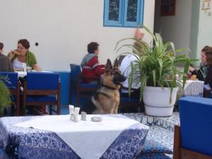 Terrace restaurant at Maya