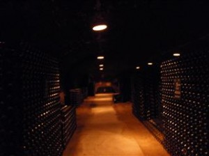 If only it was our cellar